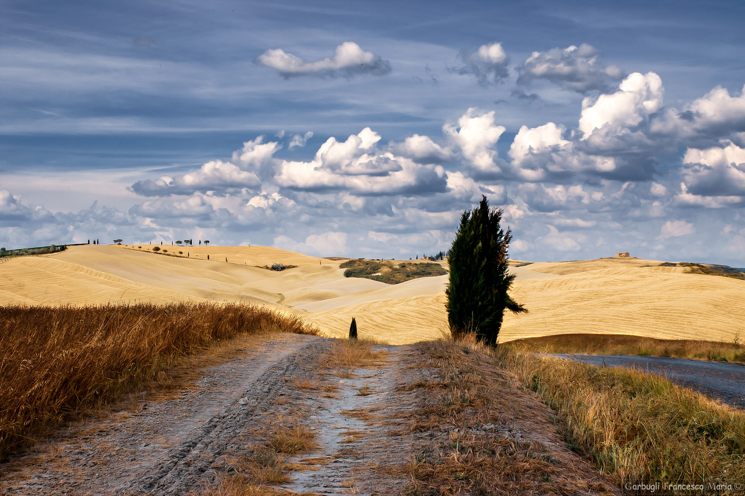 Walking through the hills of Val D'Orcia...