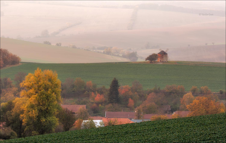 "The autumn ""blues""......"