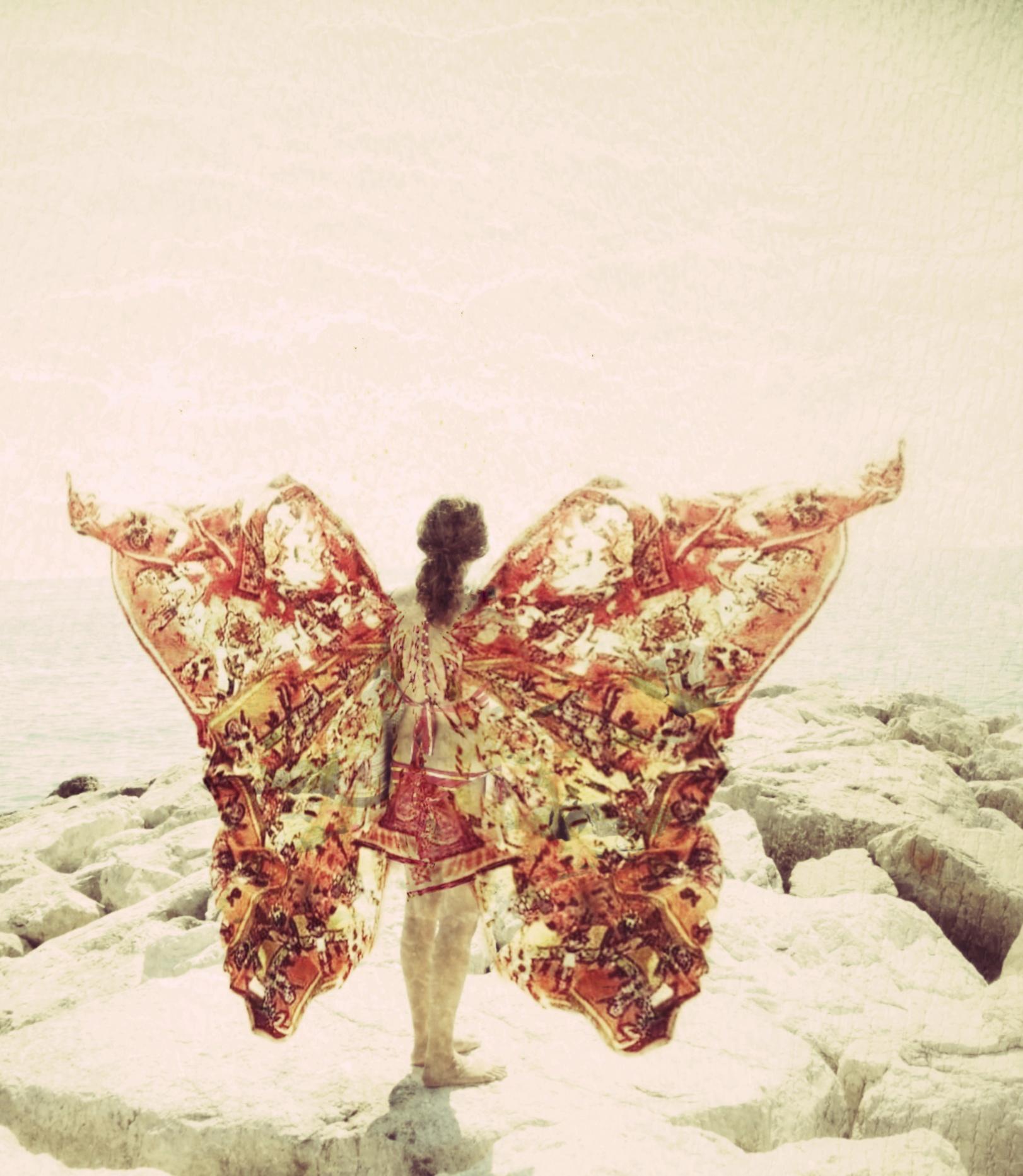 Sea Butterfly...