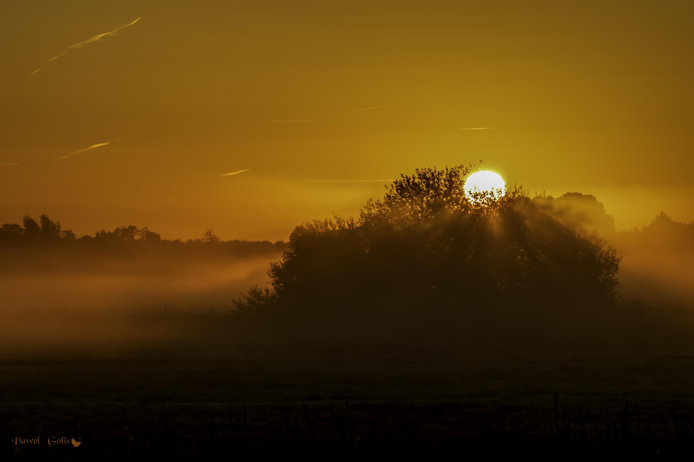 Divine glow...