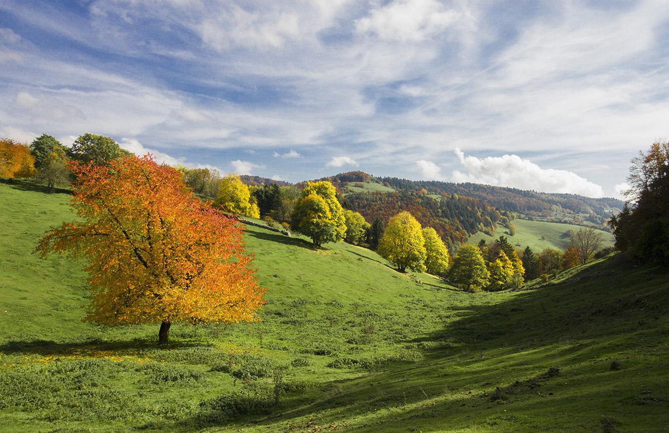 Autumn in Lessinia...