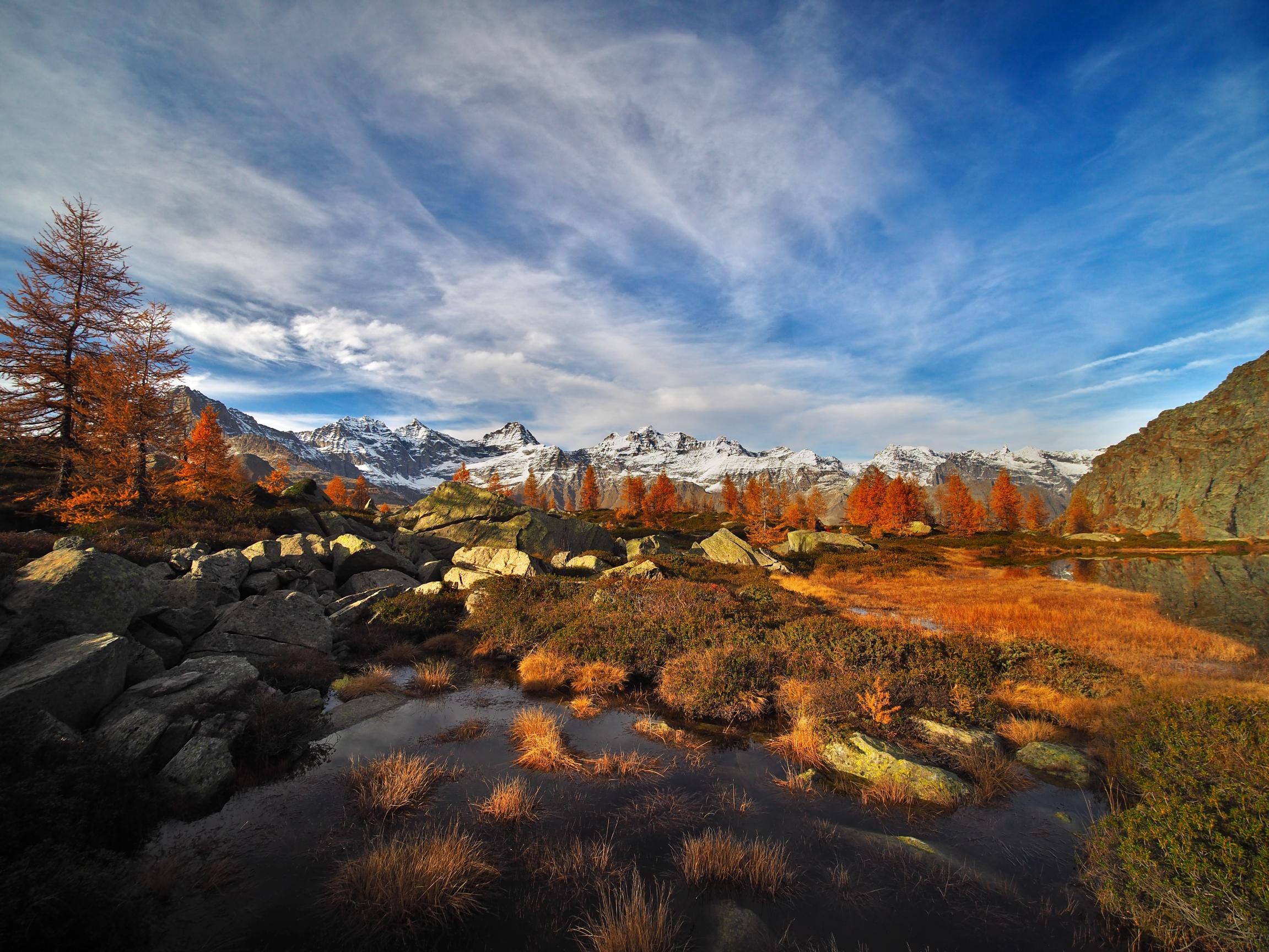 Autumn palette at altitude...
