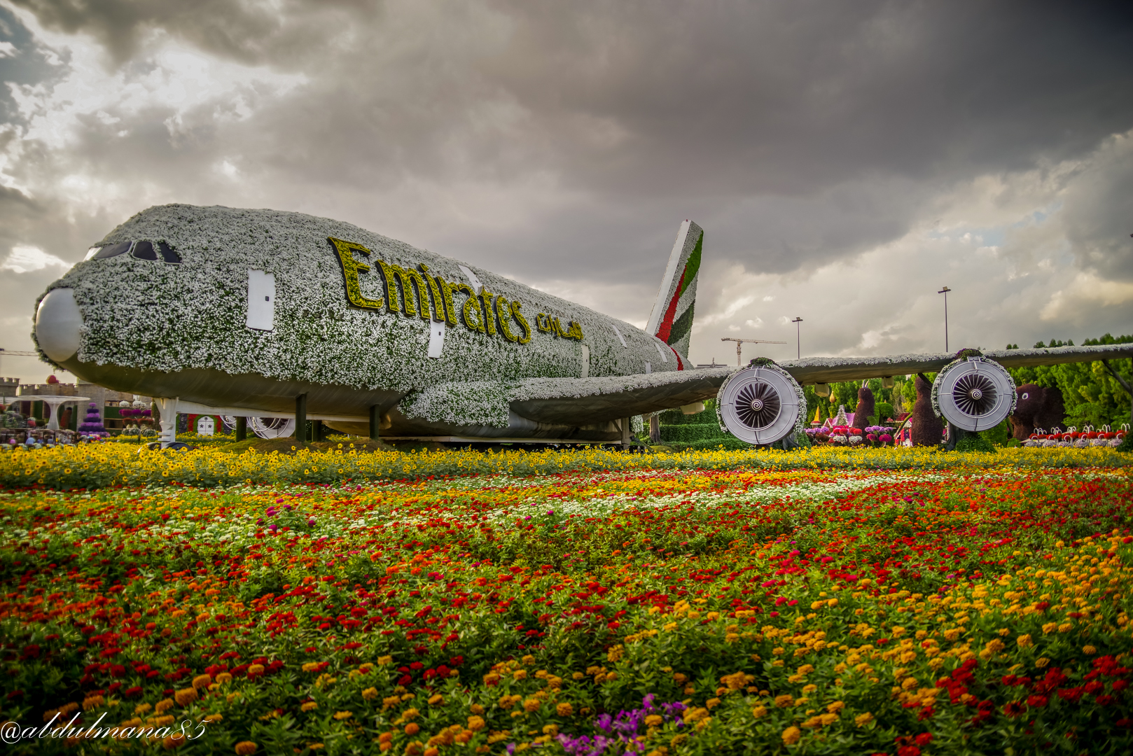 covered Airplane  by Flowers...