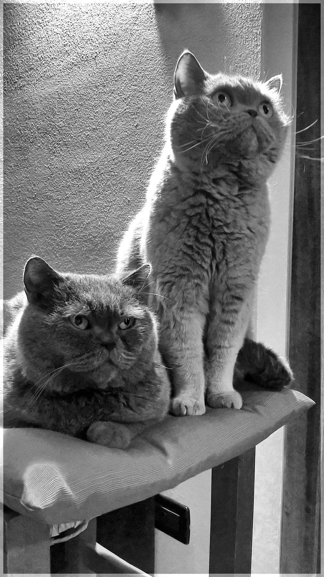 Jack & Byron...