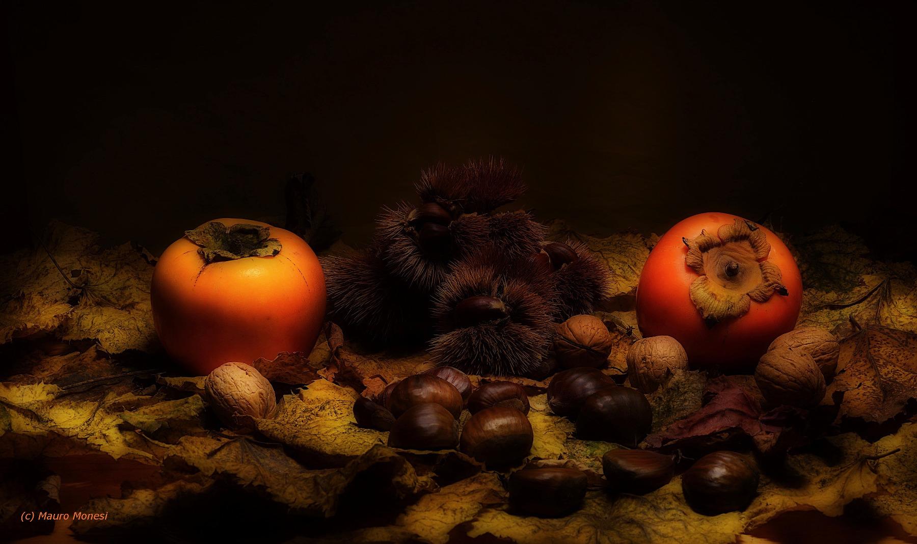Autumn nuances...