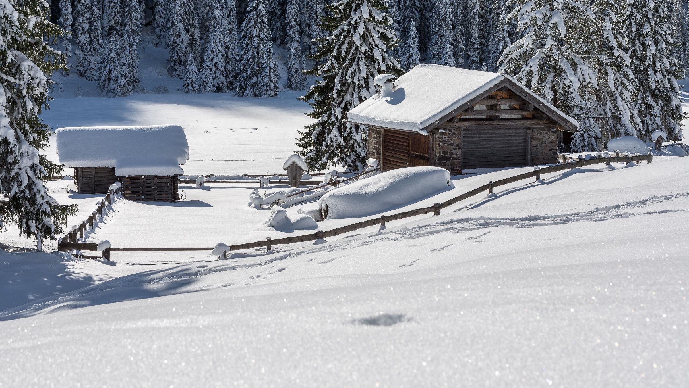 Alpine cottages...