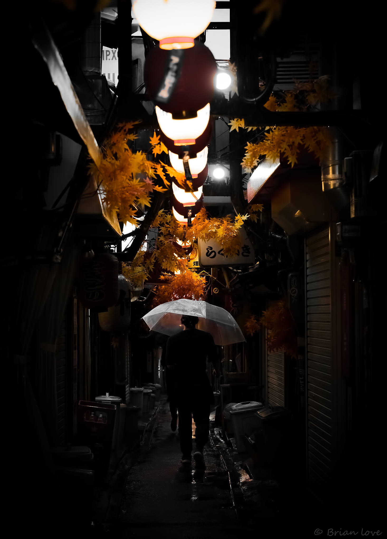 Autumn Leaves and Alleyway...