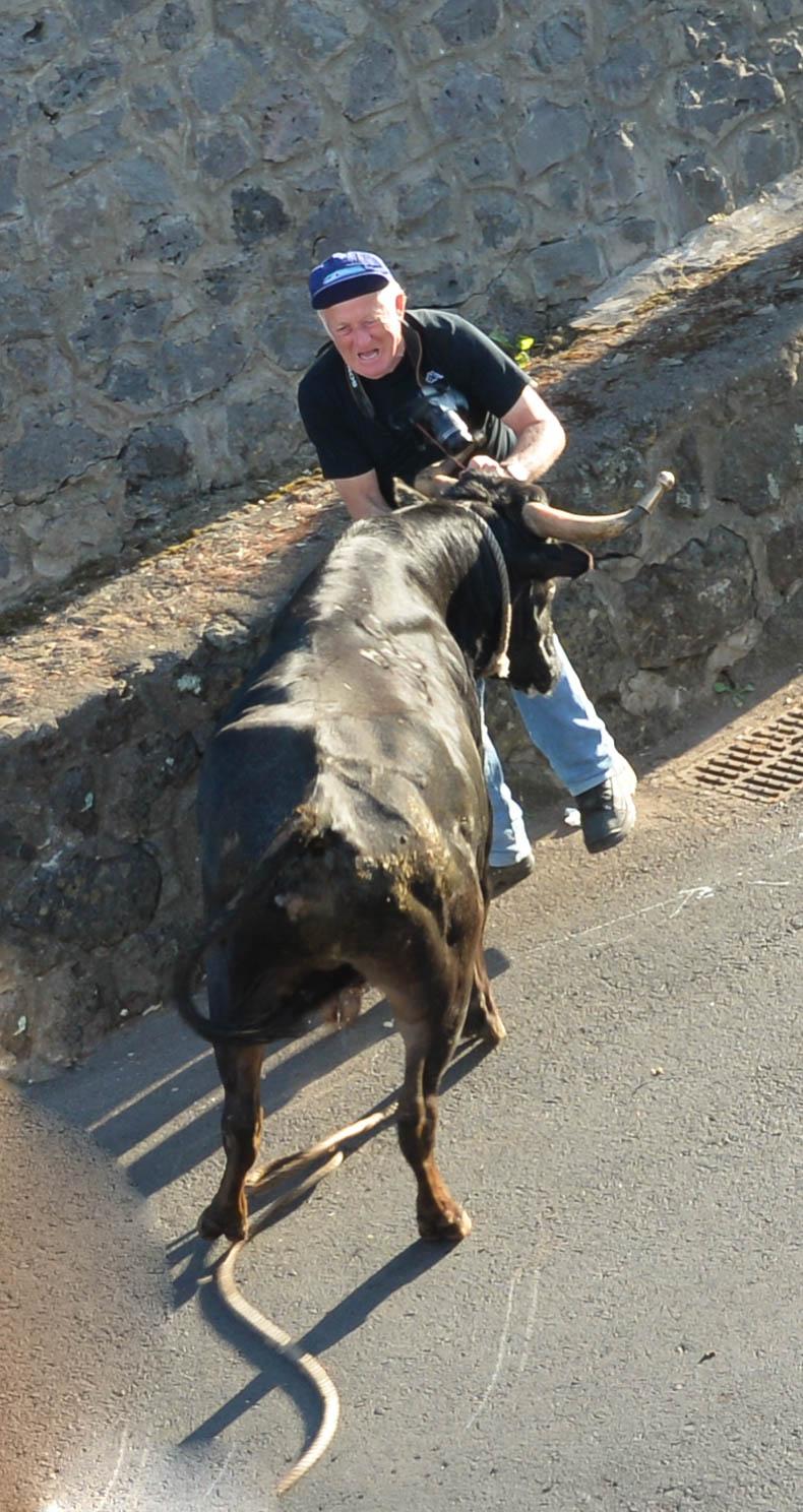 Tourada a Corda, Terceira...