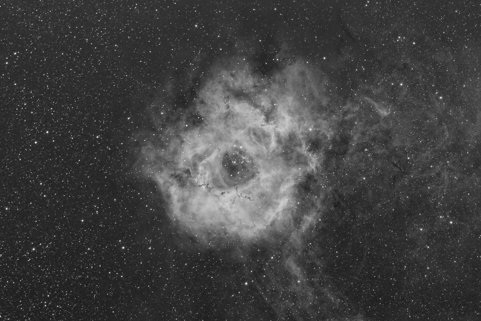 Nebulosa Rosetta...