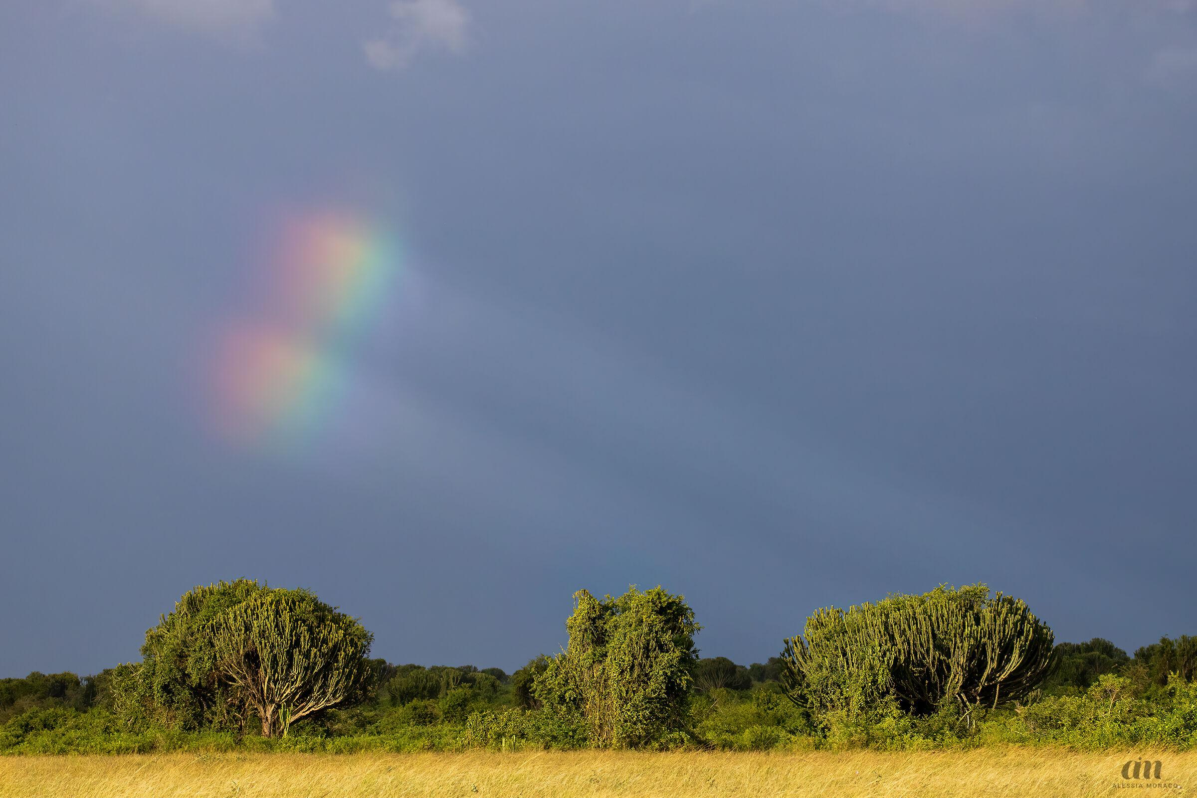 Rainbow at Queen Elizabeth NP...