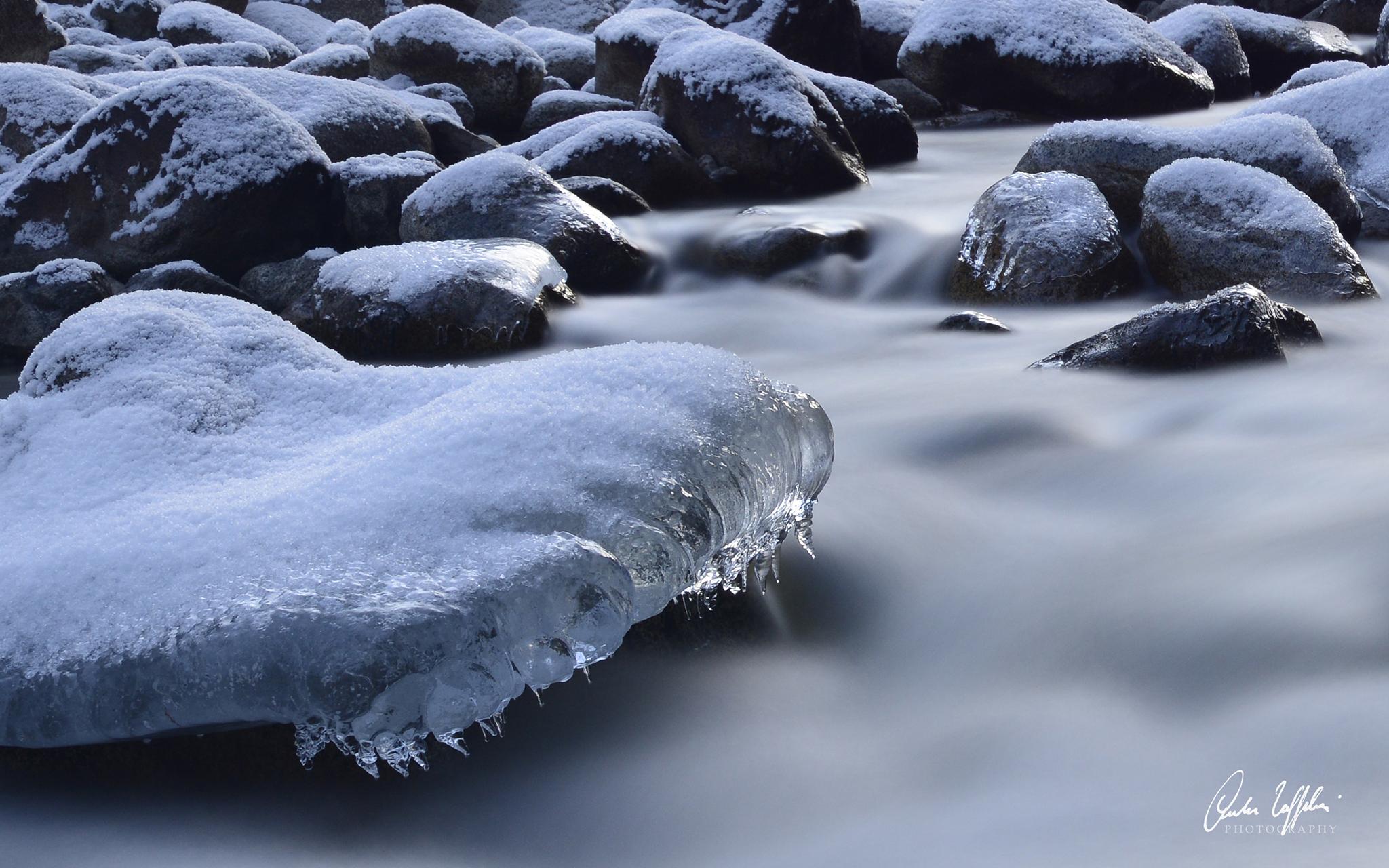 Disgelo...