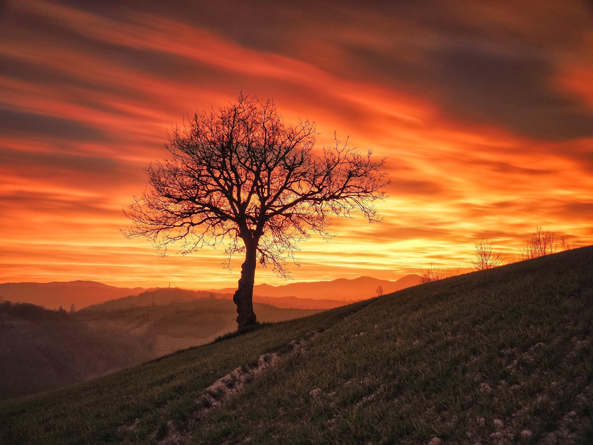 February sunsets ...