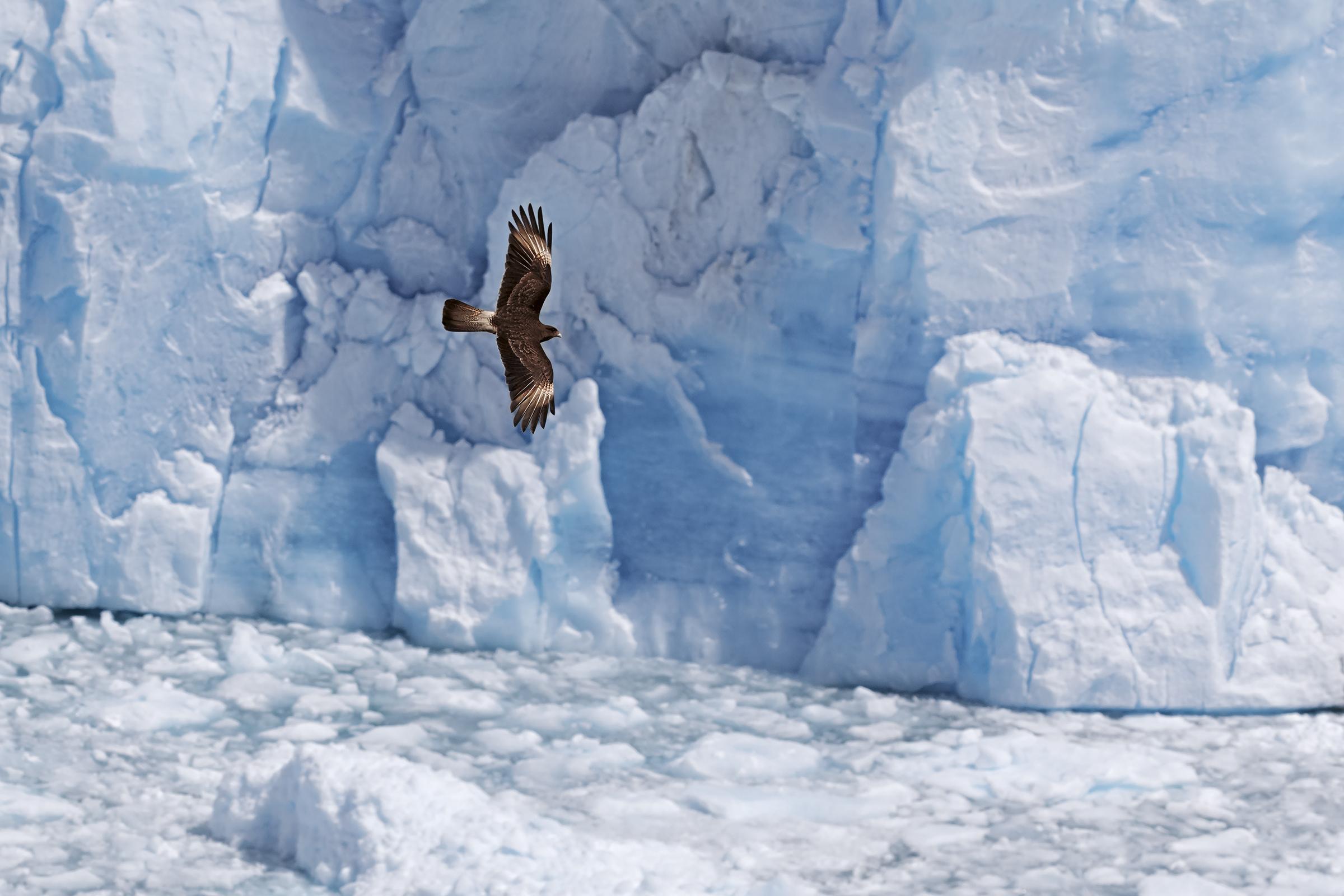 Flying over the glacier...