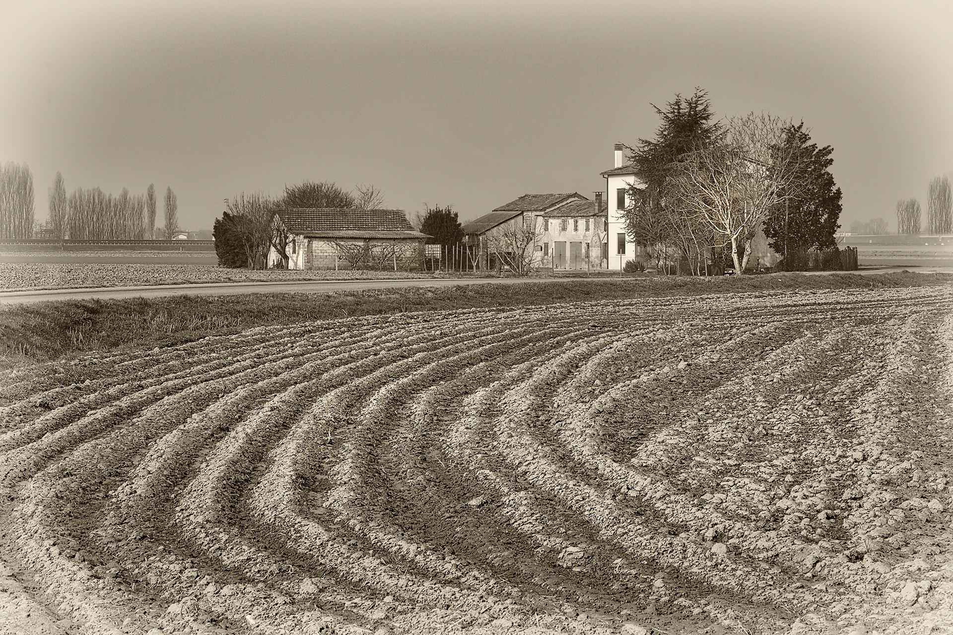 Farm...