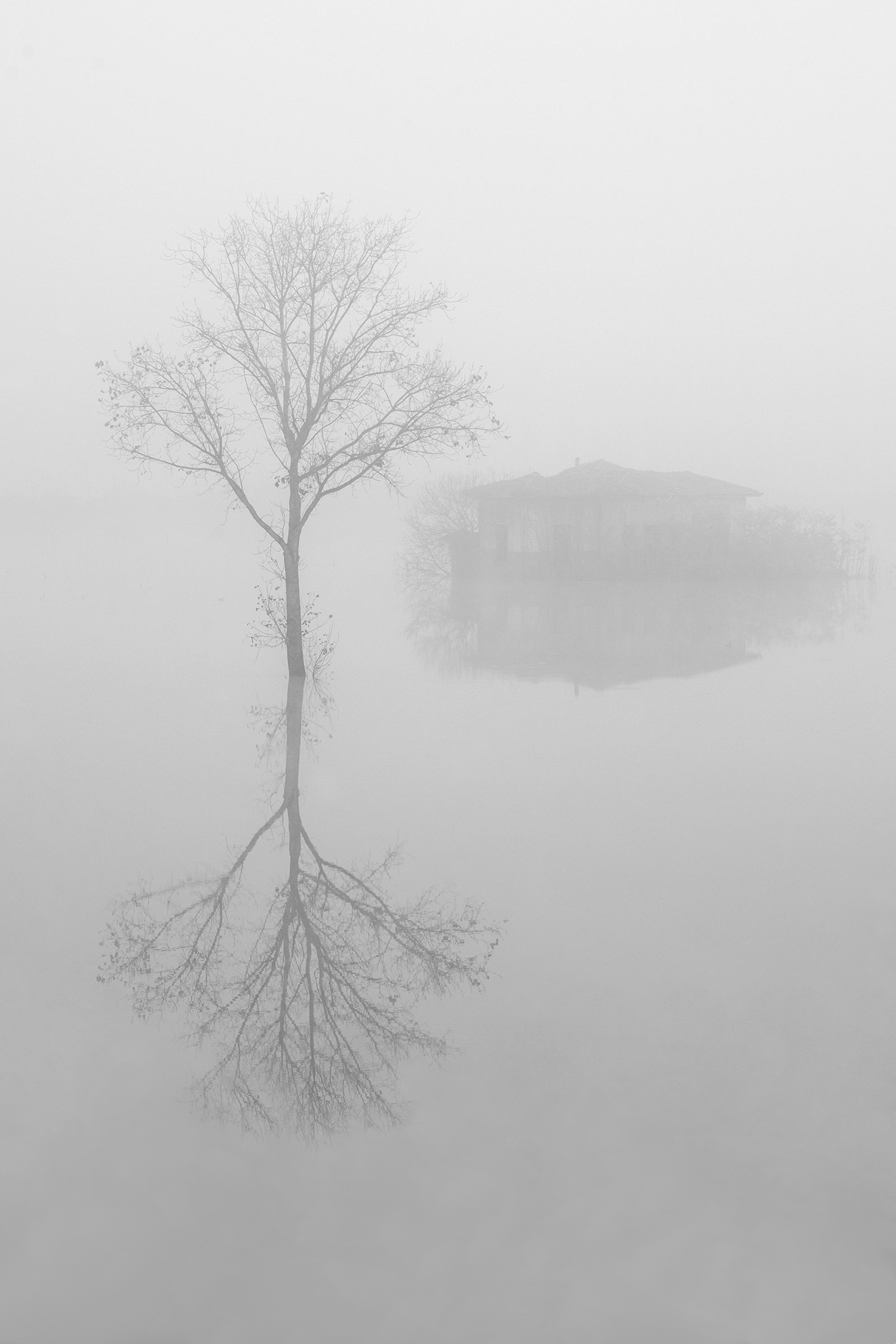 Fog also erases the past (version b/n)...
