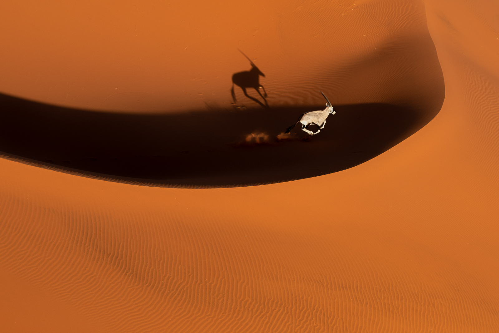 Flying over the red dunes...
