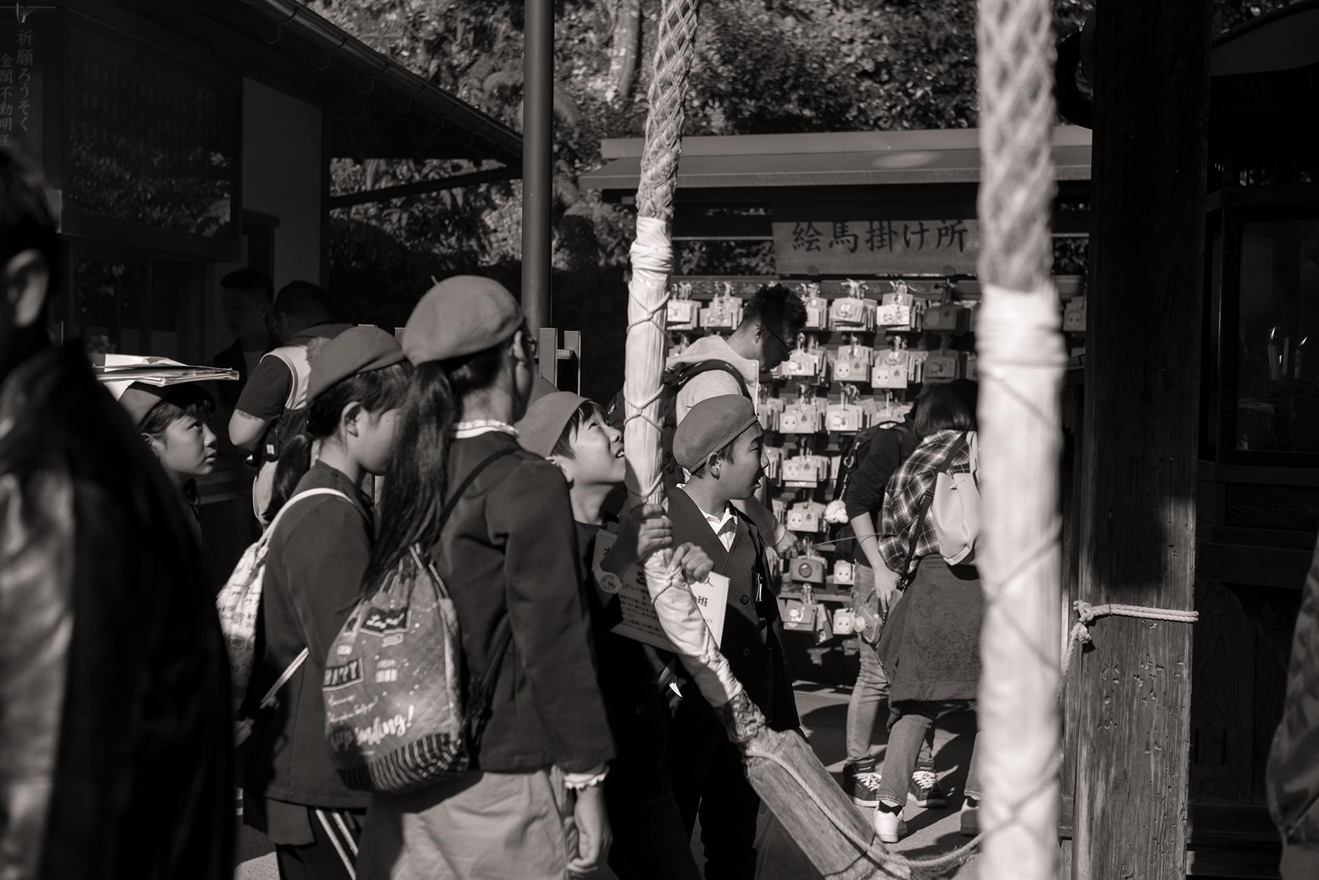 On a trip to Kinkaku-Ji...