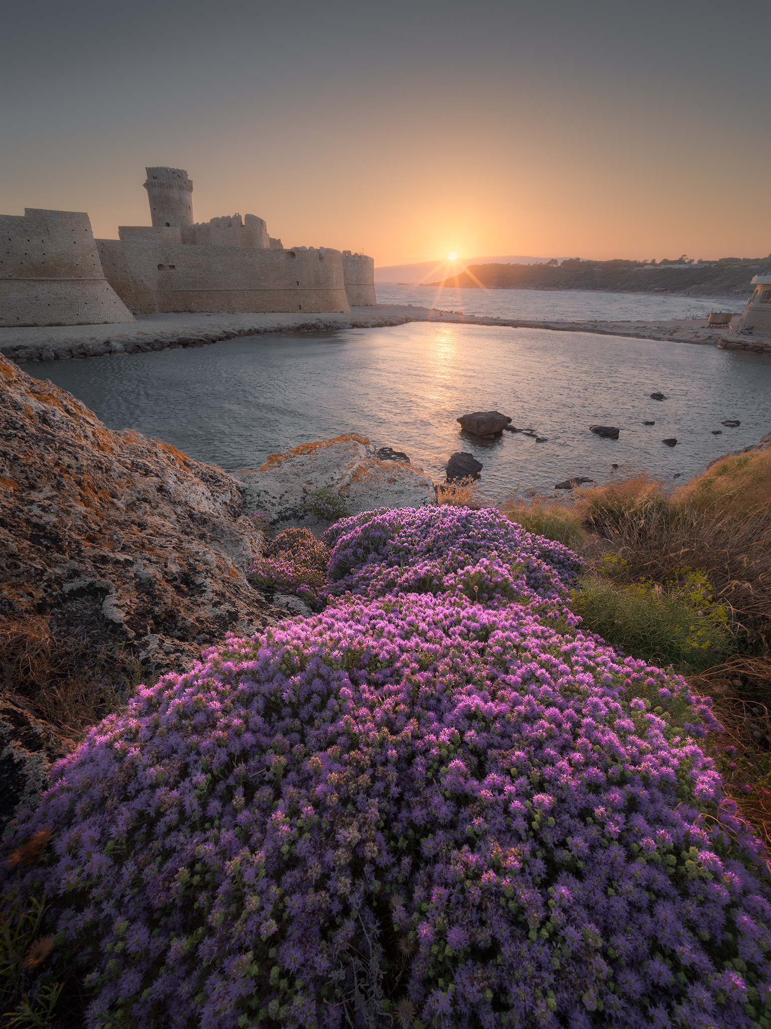 Le Castella, Flowers at Sunset...