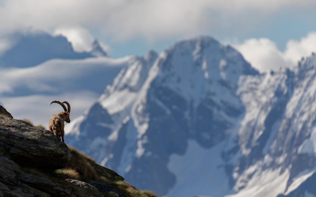 From the balcony of the Ibex.......