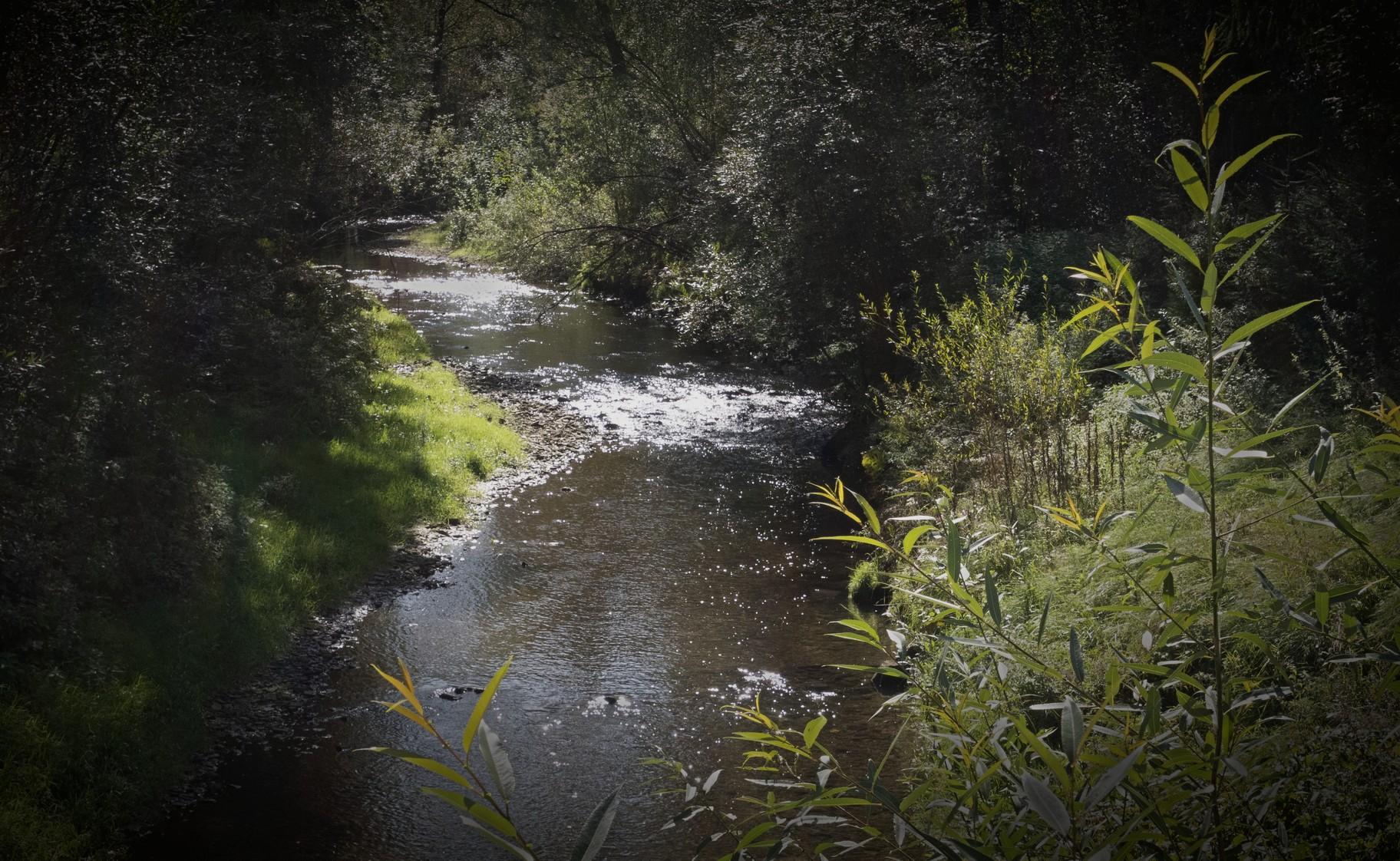 Raba River...