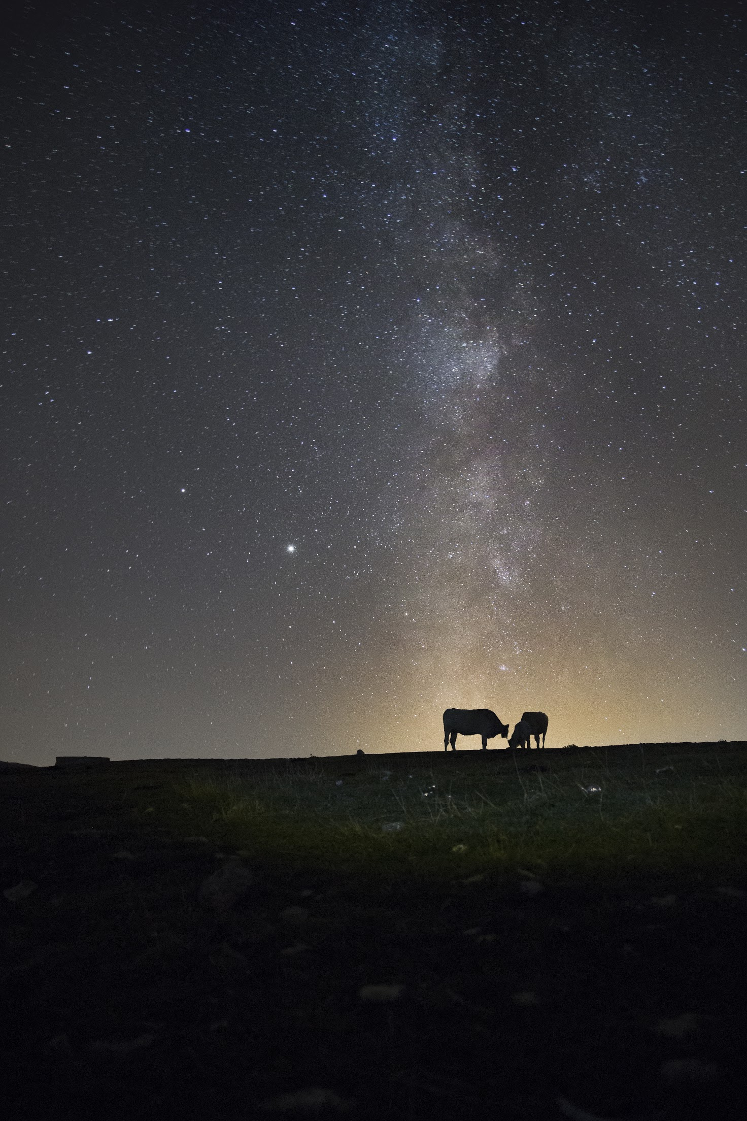 Milk Way, New Hampshire...