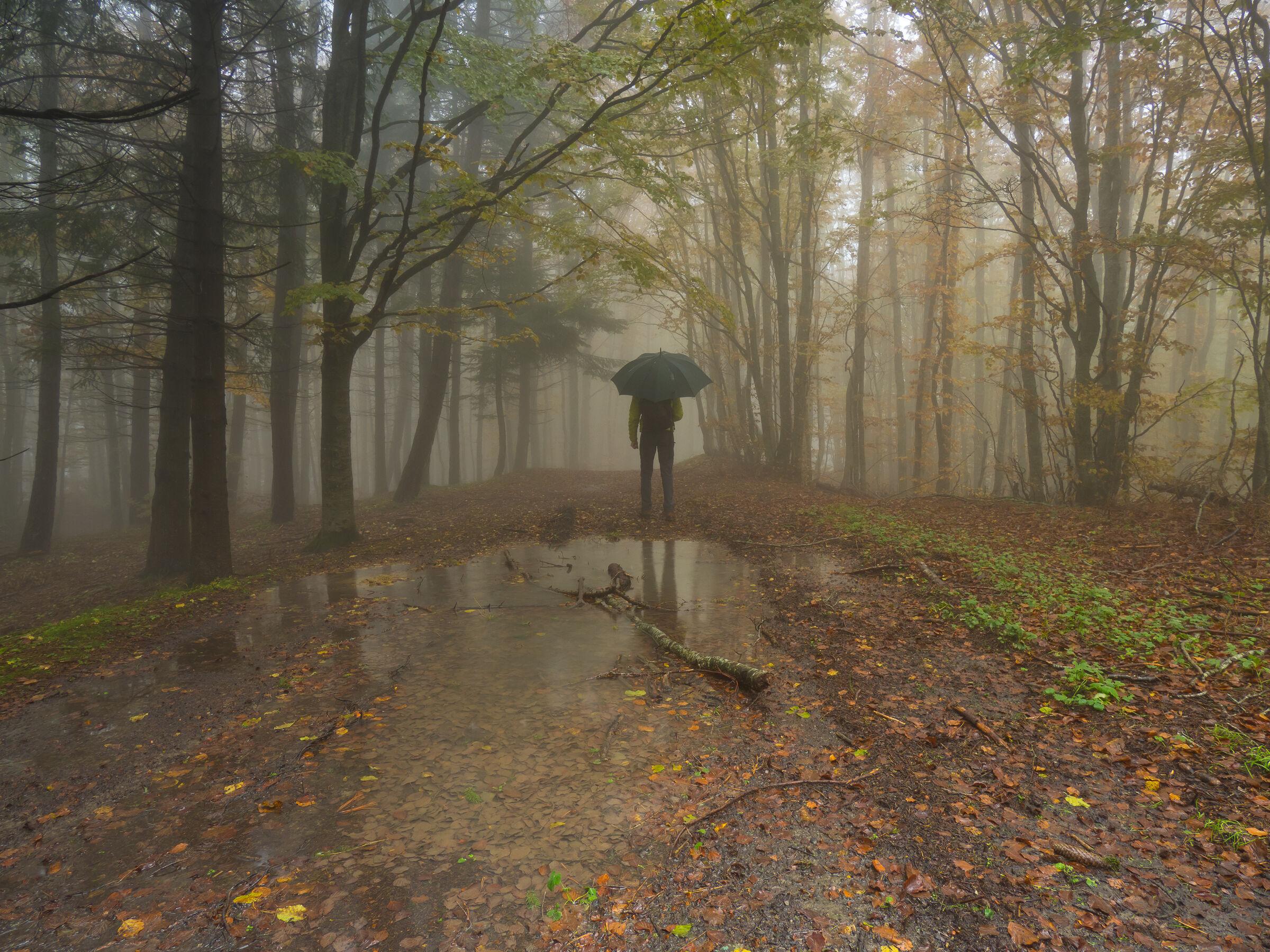 Rain Men ...