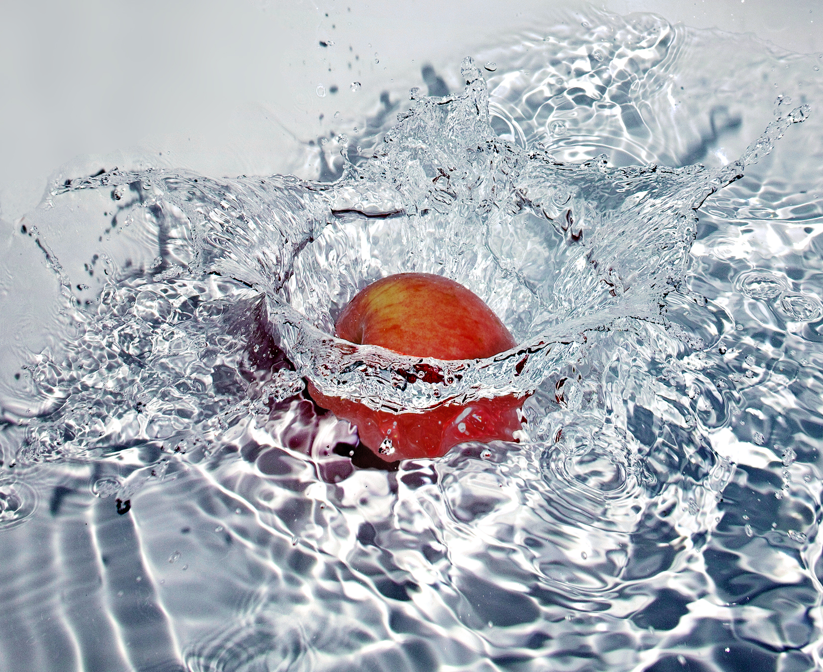 """.."""" Then the apple splashed.. """"..."""