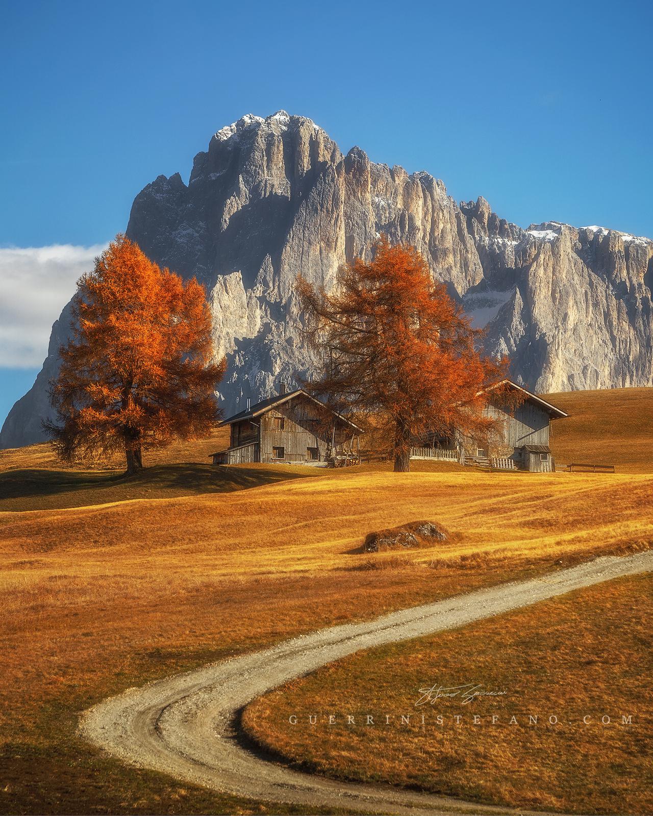 Autumn - Alpe di Siusi - Seiser Alm...