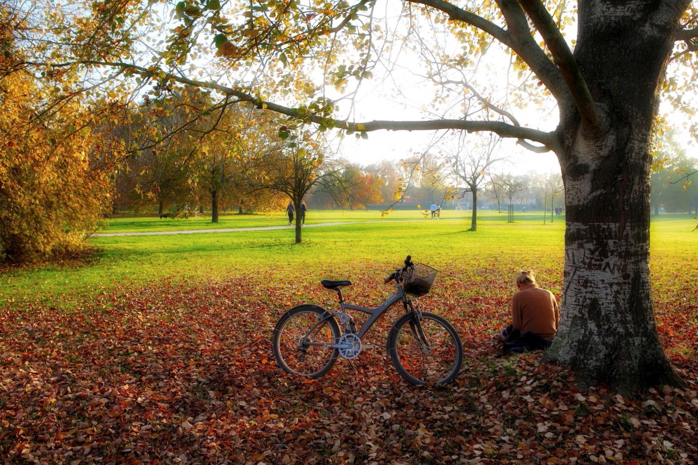 Autumn in Ferrara. Urban Park....